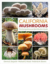 CA Mushrooms